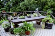 エクステリア・庭造り